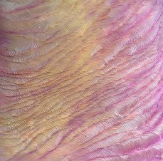 Magnitude II, acrylic on perspex