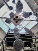 Installation at Winchester Science centre with C. Cudlip Coccolithophore.wordpress.com