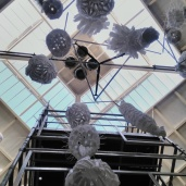 Installation at Winchester Science centre with C. Cudlip Coccolithophore.wordpress.com