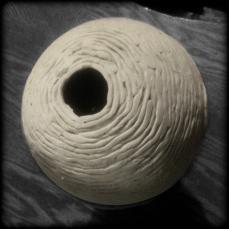 Nest, clay